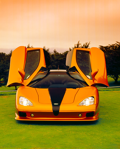 AUT 40 RK0219 03 © Kimball Stock 2005 SSC Ultimate Aero Gold And Black Head On Shot Doors Up On Grass