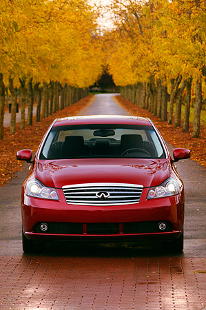 AUT 41 RK0194 01 © Kimball Stock 2006 Infiniti M45 Red Head On Shot On Road By Rows Of Trees