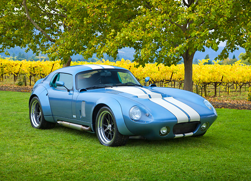 AUT 46 RK0128 01 © Kimball Stock 2011 Brock Daytona Coupe Blue With White Stripe 3/4 Front View On Grass By Trees And Vineyard