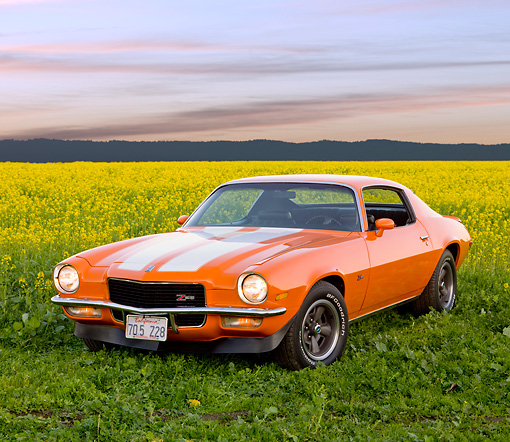 CAM 01 RK0168 01 © Kimball Stock 1970 Chevrolet Camaro Z-28 Hugger Orange And White Stripe 3/4 Front View In Field Of Yellow Wildflowers