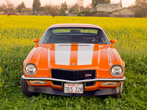 CAM 01 RK0172 01 © Kimball Stock 1970 Chevrolet Camaro Z-28 Hugger Orange And White Stripe Front View In Field Of Yellow Wildflowers