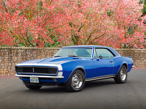 CAM 03 RK0263 01 © Kimball Stock 1967 Chevrolet Camaro RS Blue 3/4 Front View On Pavement By Cherry Blossom Trees