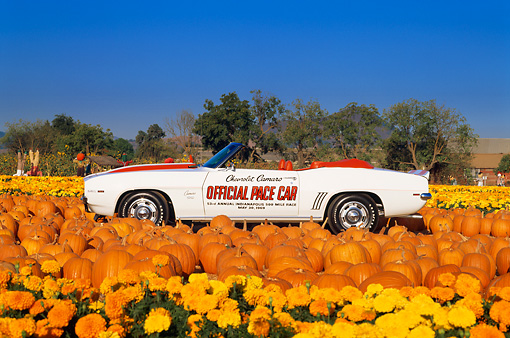 CAM 03 RK0023 05 © Kimball Stock 1969 Chevrolet Camaro Pace Car Convertible White With Hugger Orange Stripes Profile View At Pumpkin Patch Blue Sky