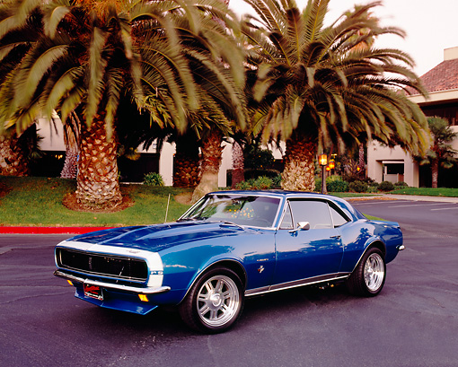 CAM 03 RK0074 02 © Kimball Stock 1967 Chevrolet Camaro RS Aqua Blue 3/4 Front View On Pavement By Palm Trees