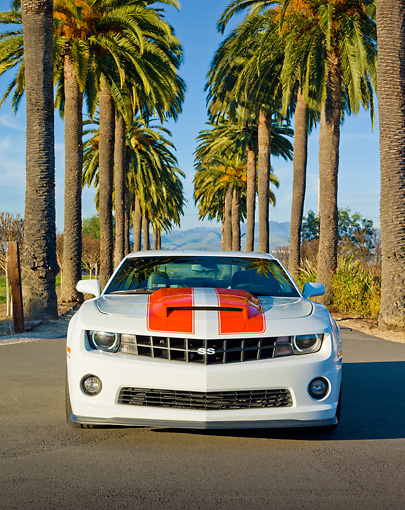 CAM 04 RK0170 01 © Kimball Stock 2011 Chevrolet SLP Camaro ZL 585 White With Red Stripes Front View On Pavement By Palm Trees