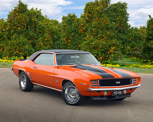 CAM 07 RK0128 01 © Kimball Stock 1969 Chevrolet Camaro RS/SS Hugger Orange With Black Stripes 3/4 Front View On Pavement By Orange Trees