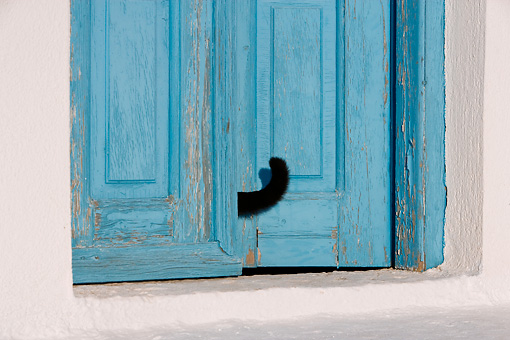 CAT 02 KH0164 01 © Kimball Stock Black Greek Island Cat Tail Poking Out Of Wooden Blue Doorway