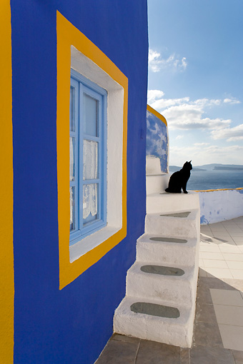 CAT 02 KH0168 01 © Kimball Stock Black Greek Island Cat Sitting On White Stairs By Blue And Orange Window