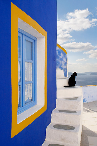 CAT 02 KH0272 01 © Kimball Stock Black Greek Island Cat Sitting On Stairs By Blue And Orange Window
