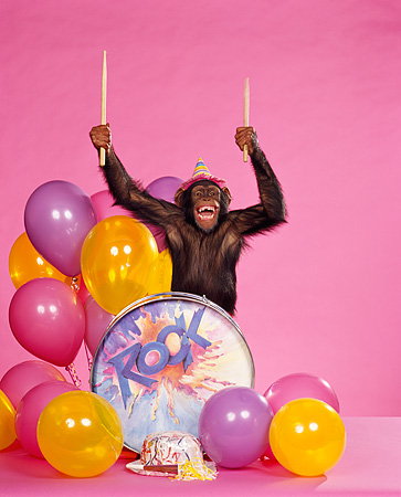 CHI 03 RK0023 01 © Kimball Stock Humorous Shot Of Eddie Wearing Party Hat Standing Behind Drum Sticks In Air By Balloons Pink Seamless