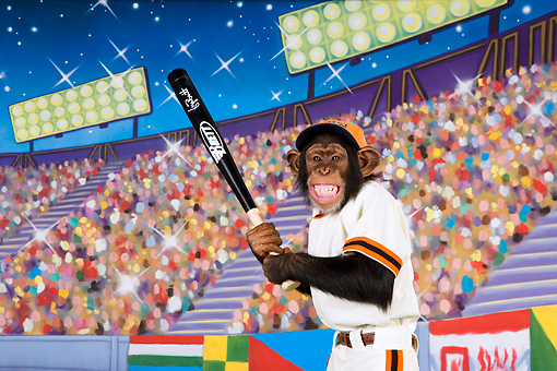 CHI 03 RK0283 01 © Kimball Stock Humorous Baseball Player Chimpanzee: King Of Swing