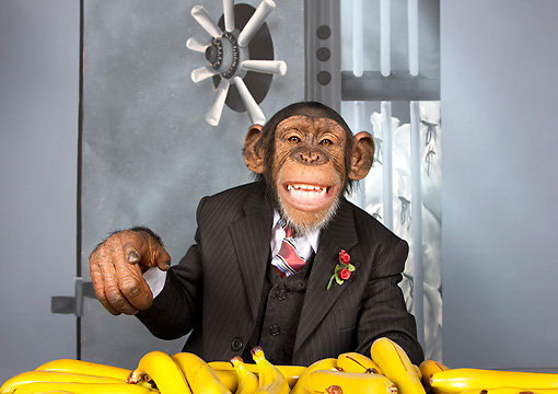 CHI 03 RK0305 01 © Kimball Stock Top Banana