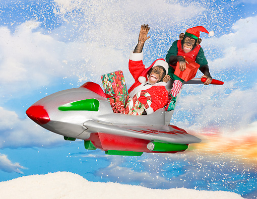 CHI 03 RK0312 01 © Kimball Stock Santa And Elf Chimpanzees With Gifts Flying Rocket Sleigh In Snow