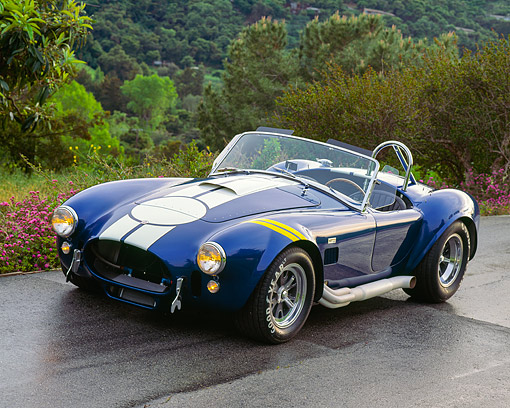 COB 01 RK0019 01 © Kimball Stock 1967 Shelby Cobra 427 Blue With White Stripe 3/4 Front On Wet Pavement By Flowers And Trees
