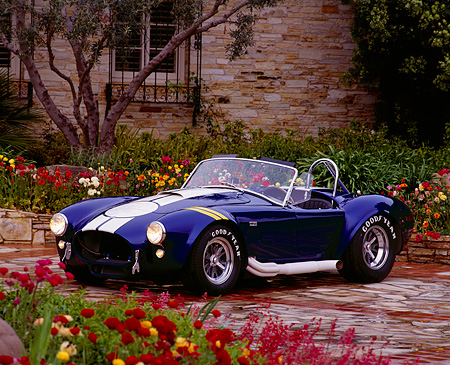 COB 01 RK0020 24 © Kimball Stock 1967 Shelby Cobra S/C 427 Blue White Stripe 3/4 Front View On Brick By Flowers