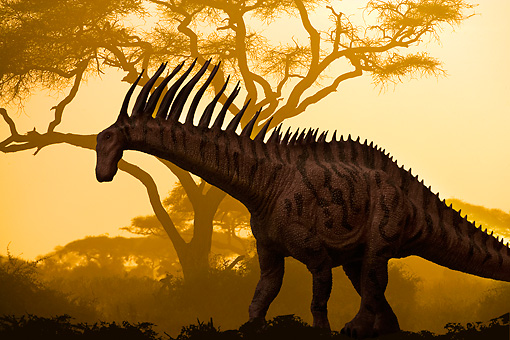 DIN 01 JZ0002 01 © Kimball Stock Silhouette Profile Of Amargasaurus Standing By Tree