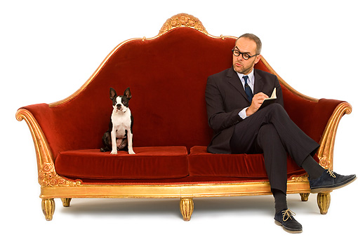 DOG 02 JE0051 01 © Kimball Stock Boston Terrier Sitting On Red Sofa With Psychiatrist On White Seamless