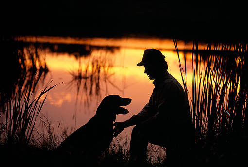 DOG 18 DB0046 01 © Kimball Stock Silhouette Shot Of Labrador Retriever And Owner At Lake At Sunset
