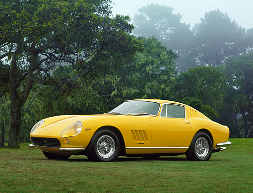 FRR 04 RK0700 01 © Kimball Stock 1965 Ferrari 275 GTB Yellow  3/4 Front View On Grass By Trees
