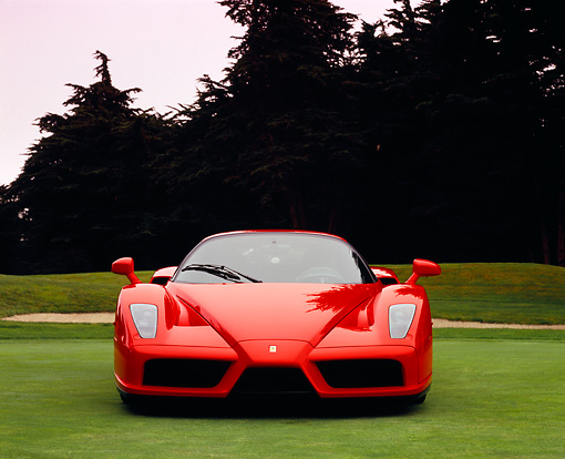 FRR 04 RK0324 01 © Kimball Stock 2003 Ferrari Enzo Rosso Dino Red Head On View On Grass By Trees