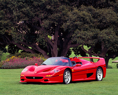 FRR 05 RK0030 04 © Kimball Stock 1995 Ferrari F-50 Red 3/4 Front View On Grass By Trees