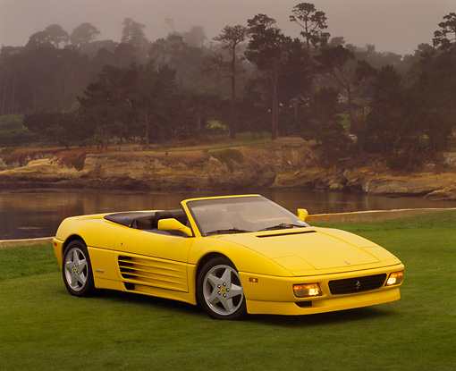 FRR 08 RK0031 04 © Kimball Stock 1994 Ferrari 348 Spyder Yellow 3/4 Front View On Grass By Water