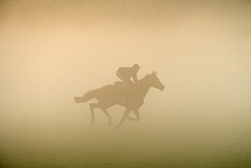 HOR 01 JE0006 01 © Kimball Stock English Thoroughbred Racing On Field In Fog