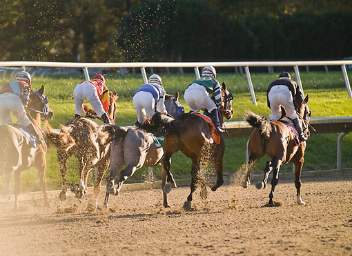HOR 01 MB0391 01 © Kimball Stock Horse Racing On Track