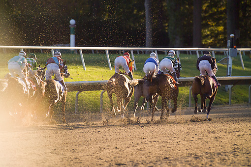 HOR 01 MB0392 01 © Kimball Stock Horse Racing On Track