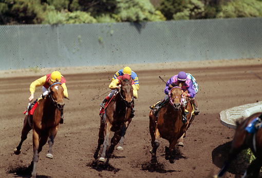 HOR 01 MR0004 01 © Kimball Stock Horses Racing Around Track