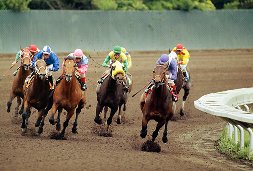 HOR 01 MR0006 01 © Kimball Stock Horses Racing Around Track