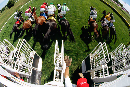 HOR 01 MR0008 01 © Kimball Stock Overhead Wide Angle View Of Race Horses Leaving Gate