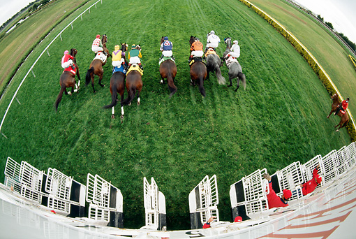 HOR 01 MR0009 01 © Kimball Stock Overhead Wide Angle View Of Race Horses Leaving Gate