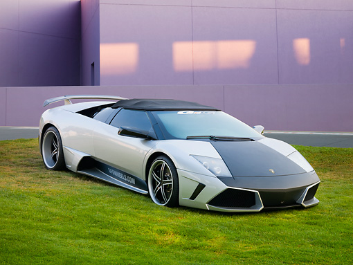 LAM 01 RK0746 01 © Kimball Stock 2008 Lamborghini Murcielago LP640 Roadster Silver And Black 3/4 Front View On Grass