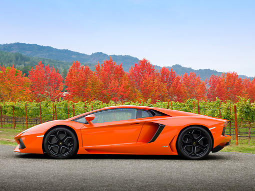 LAM 01 RK0760 01 © Kimball Stock 2012 Lamborghini Aventador Orange Profile View On Pavement By Vineyard