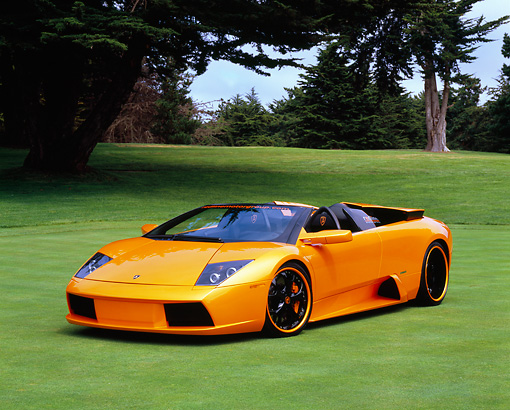 LAM 01 RK0539 02 © Kimball Stock 2005 Lamborghini Murcielago Roadster Orange 3/4 Front View On Grass By Trees