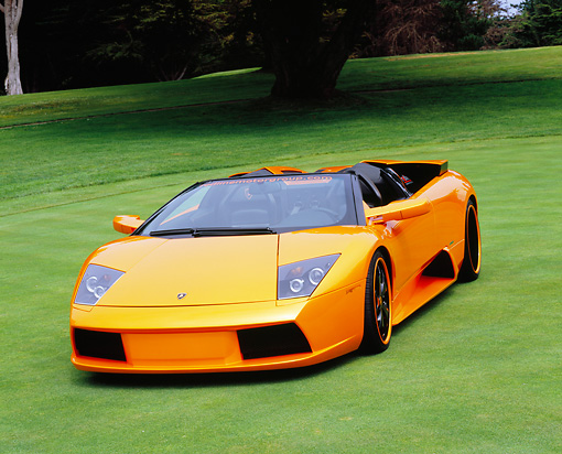 LAM 01 RK0542 01 © Kimball Stock 2005 Lamborghini Murcielago Roadster  Orange Pearl 3/4 Front View On Grass