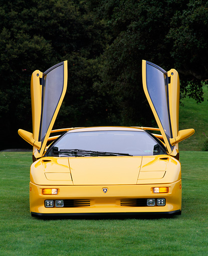 LAM 02 RK0023 02 © Kimball Stock 1994 Lamborghini Diablo SE30 Yellow Doors Up Head On Shot On Grass