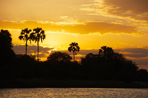 LAN 01 MC0007 01 © Kimball Stock Sunset On Zambezi River In Botswana, Africa
