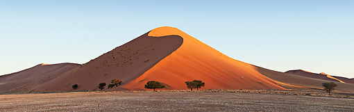 LAN 01 MH0045 01 © Kimball Stock Sand Dunes And Acacia Trees In Namib Desert