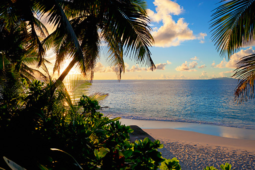 LAN 01 MH0101 01 © Kimball Stock View Of Beach Through Coconut Palms At Sunset On Fregate Island, Seychelles