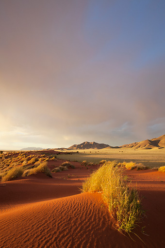 LAN 01 MH0103 01 © Kimball Stock NamibRand Nature Reserve At Sunset In Southwestern Namibia