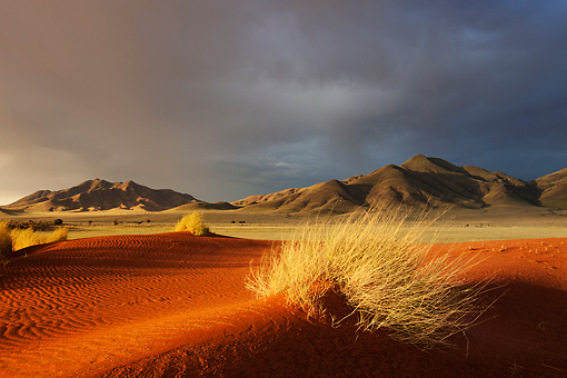 LAN 01 MH0104 01 © Kimball Stock NamibRand Nature Reserve At Sunset In Southwestern Namibia