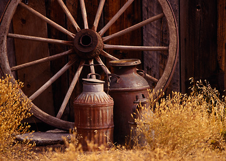 LAN 05 RK0013 05 © Kimball Stock Old Wagon Wheel And Cans Against Barn  Oregon