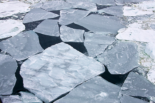 LAN 06 KH0002 01 © Kimball Stock Cracked Ice In Weddell Sea  In Spring Antarctica