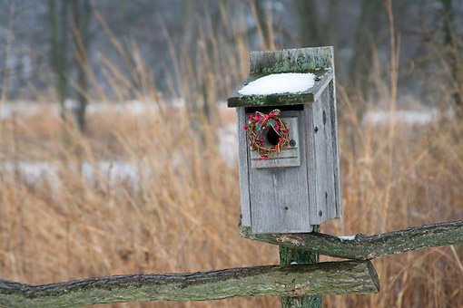 LAN 07 DA0001 01 © Kimball Stock Bird Nest Box With Holiday Wreath In Winter Illinois