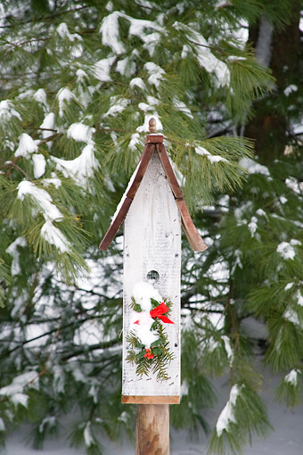 LAN 07 DA0002 01 © Kimball Stock Bird Nest Box With Holiday Decorations In Winter Illinois