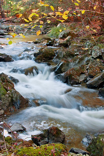 LAN 07 DS0013 01 © Kimball Stock Fall Foliage At Mountain Stream In Millbrook, New York