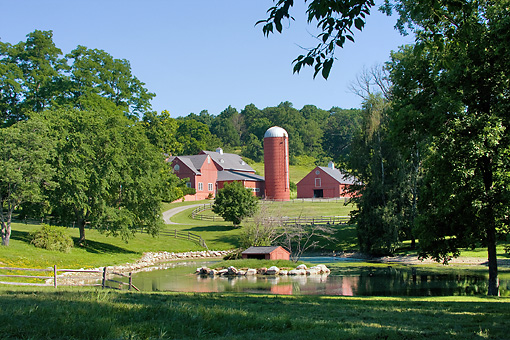 LAN 07 DS0019 01 © Kimball Stock Red Barns By Pond In Millbrook, New York