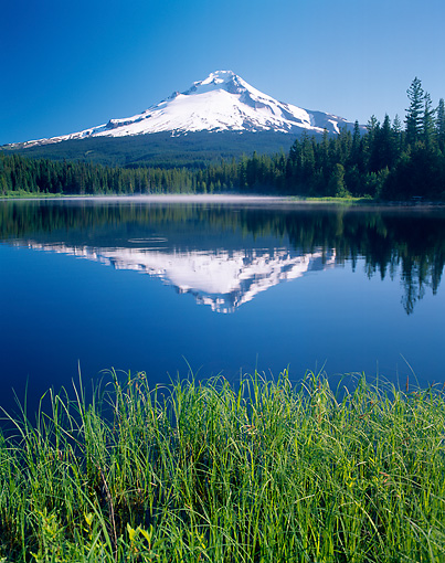 LAN 07 GR0076 01 © Kimball Stock Mount Hood Reflected In Trillium Lake Oregon